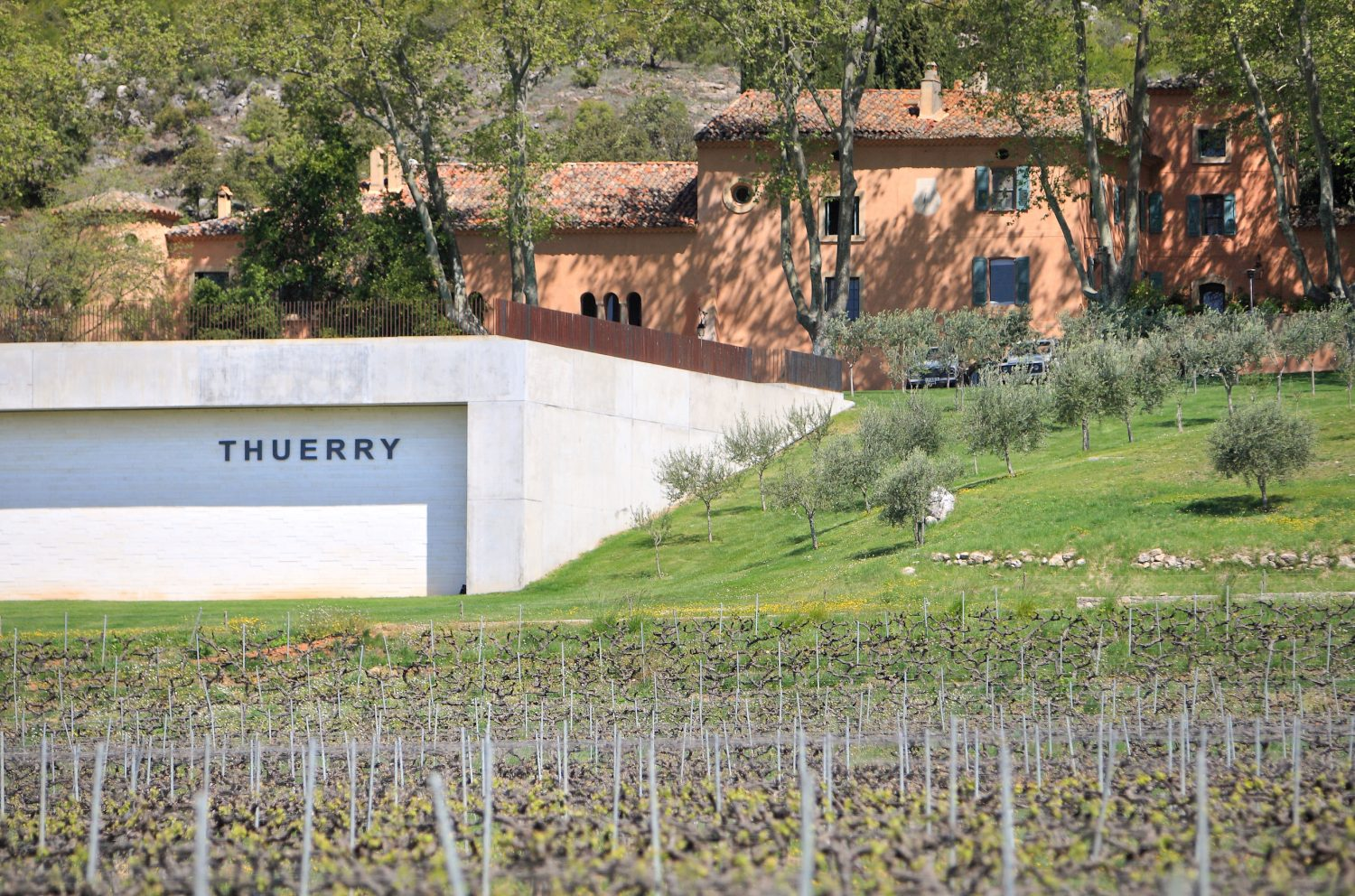 villa thuerry vineyard