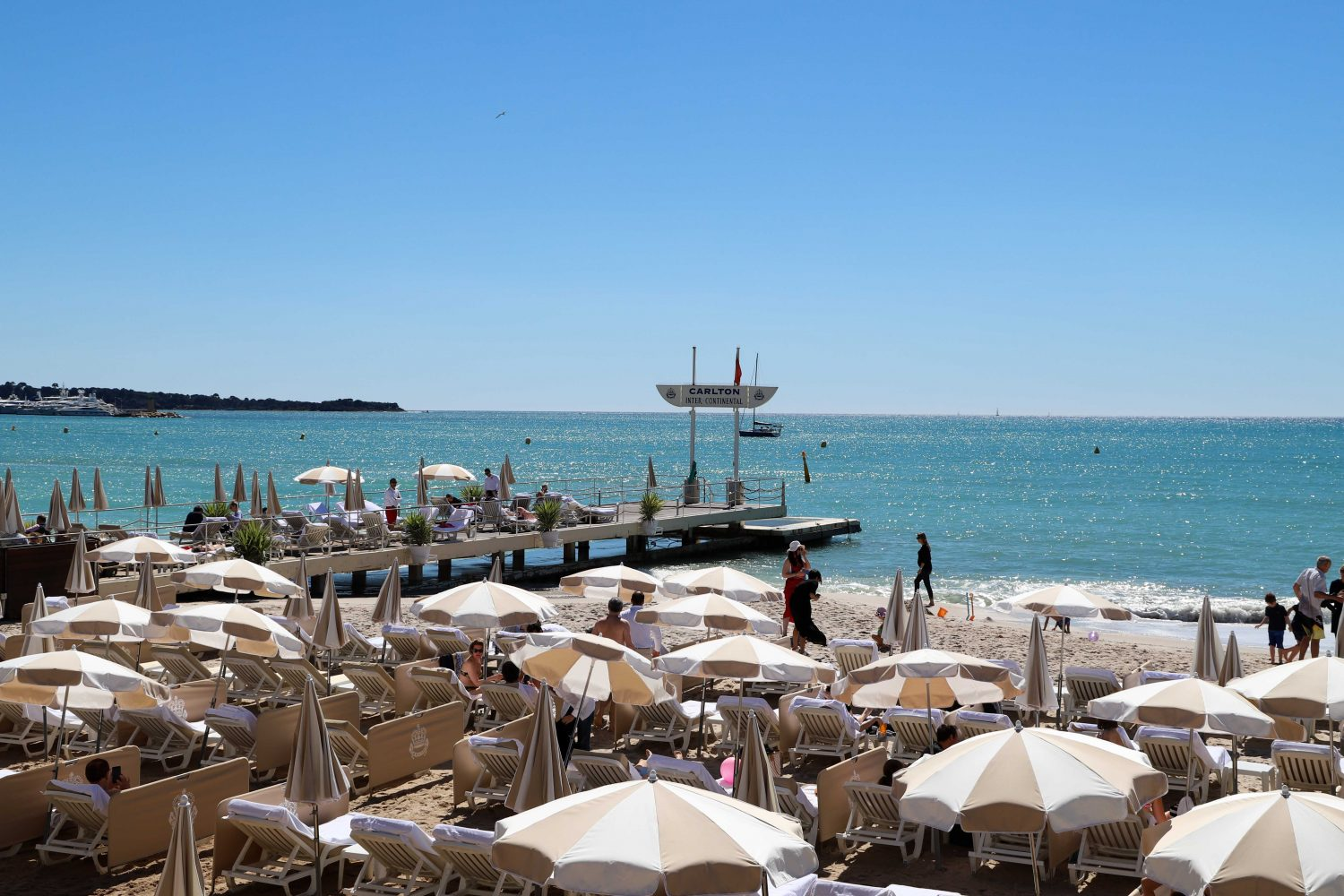 Properties in Cannes
